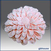 Garden Chrysanthemum0811